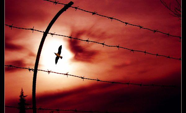 Il Liberalismo può esaurirsi nel tempo. La Libertà no.